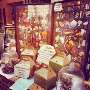 Grow your own mushrooms kit at a stall inside the Ferry Building