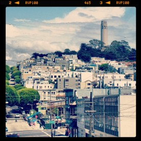 View of Telegraph Hill from the base of Lombard Street