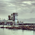 The lighthouse at Forbe's Island and the many seals of Pier 39 at Fisherman's Wharf