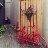 """The entrance to the """"Secret Garden."""""""