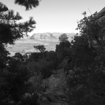A view from our hike.