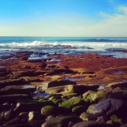 The beach of La Jolla Cove.