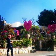 A gardening store that we passed along the CA-1. Decorated for Valentine's Day!