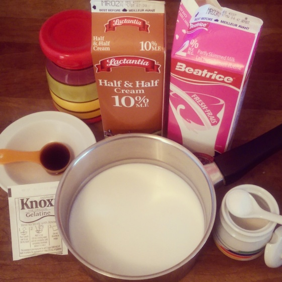 All of my ingredients for panna cotta gathered on the counter.