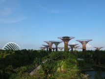 The Gardens by the Bay