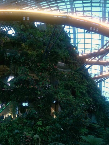 Inside the Cloud Forest at Gardens by the Bay