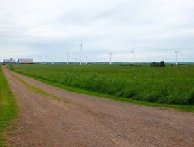 Plenty of wind turbines to be found along the highways.