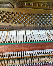 The piano innards.